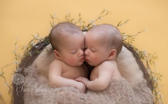Zwillinge, Newbornfotografie und Kinderfotografie in Winterthur
