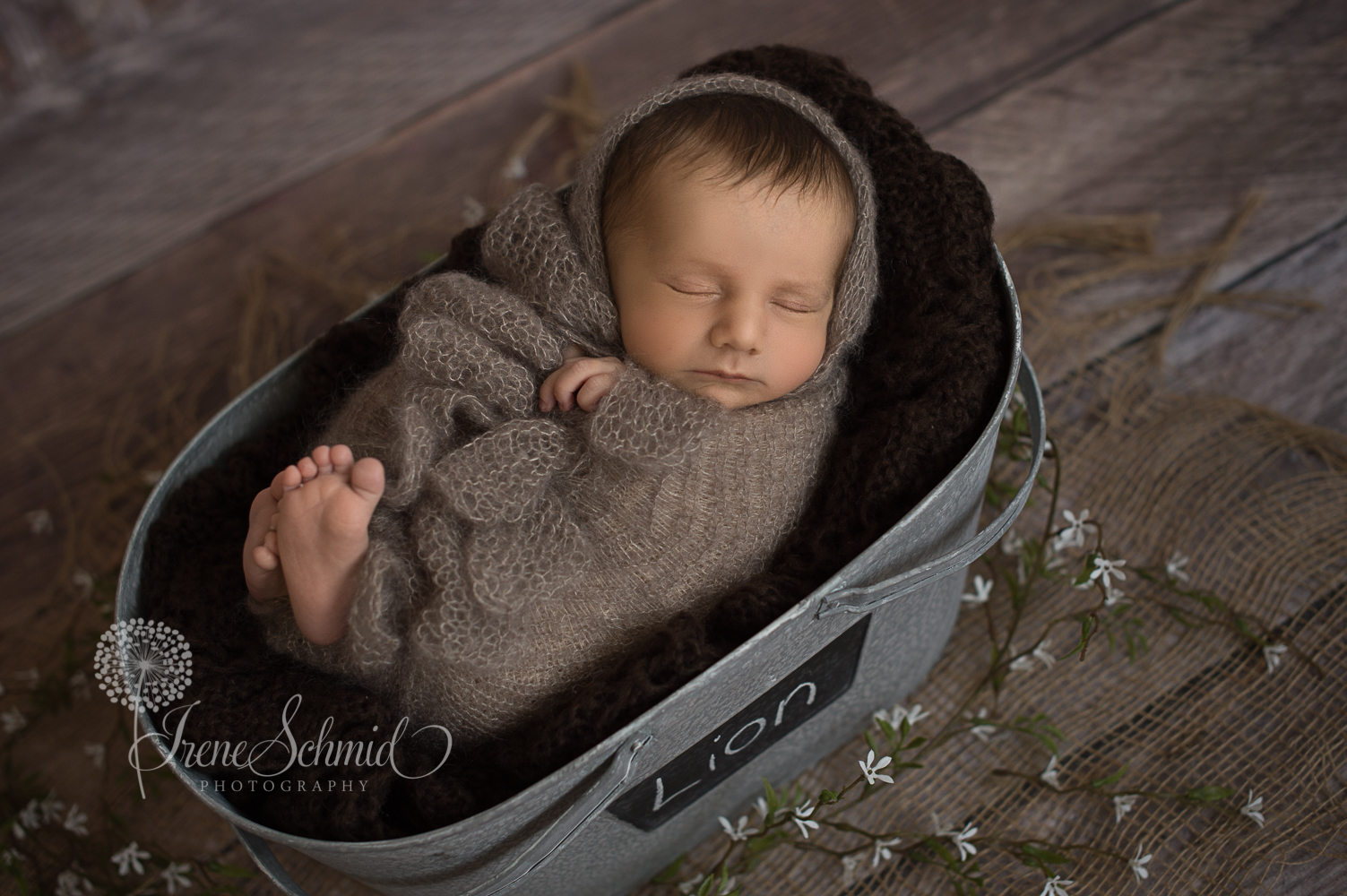 Mini-Wrapped-Shooting - Babyfotografin aus Winterthur